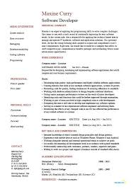 professional software engineer resumes software developer resume exxample sample application