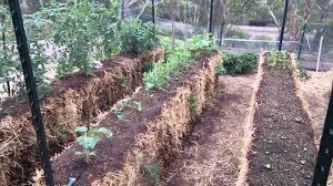 my straw bale garden you