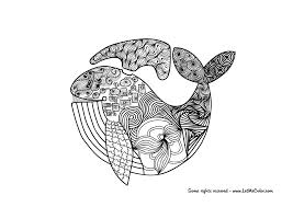 Whale adult coloring page – LetMeColor
