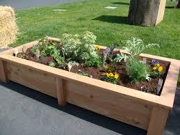 Small Picture Raised Bed Garden Design Gardening Ideas