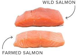 Salmon Temperature Chart How To Buy Prep And Cook Salmon