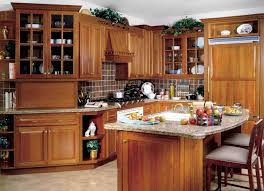 Unusual Kitchen Kitchen Exciting Kitchen Design Brown Wooden Cabinet Granit