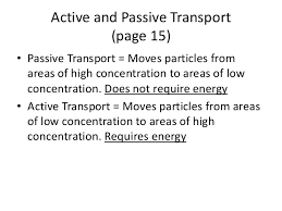 Active Vs Passive Transport Venn Diagram Active Transport And Passive Transport Venn Diagram Rome
