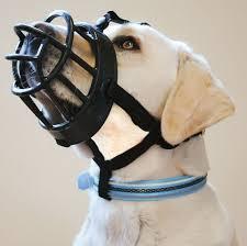 Baskerville Muzzle Size Chart Baskerville Ultra Dog Muzzle Size 3 Black Muzzle For