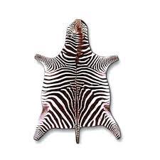 zebra skin rugs south africa for uk used rug