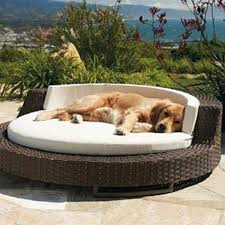 dog bed for outdoor rattan chair