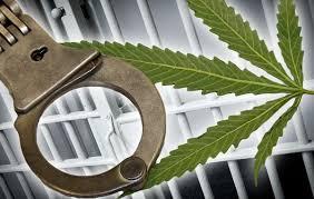 У Старобільську  засудили до позбавлення волі жінку за незаконне виготовлення та зберігання наркотичних засобів