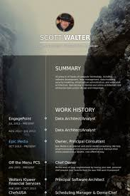 architect resume format real cv examples resume samples visual cv free samples database