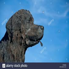 labrador statue atue yellow garden statues chocolate lab for with regard to cocker spaniel statues