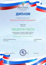 Наши достижения МБДОУ  Диплом за сайт 07 2016