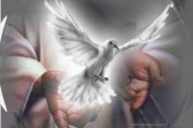 Resultado de imagem para dons do espirito santo