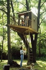 House Plans Treehouse Plans  Treehouse Bunk Bed Plans  How Much How To Build A Treehouse For Adults