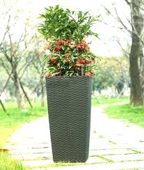 big outdoor planters how to plant tall pots big outdoor planters plant