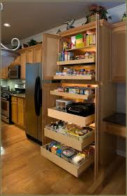 Freestanding Kitchen Pantry Cabinet Stand Alone Kitchen Pantry Stand Alone White Pantry Cabinets