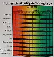 Best 25+ Ideas About Ph Chart   Find What You'll Love