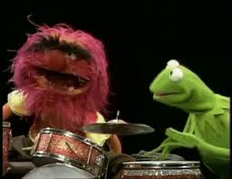 animal muppet drums gif. Modren Gif The Muppets Animal Insane Drums GIF Inside Muppet Gif