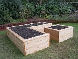 kitchen garden raised beds