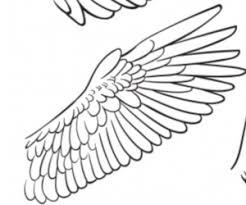 初心者向け超簡単にかっこいい翼が描けるコツは3つだけイラスト風