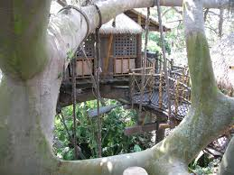 exploring the swiss family robinson treehouse disney world blog discussing parks resorts s and dining only wdworld
