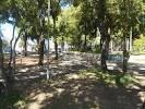 imagem de Sapucaia do Sul Rio Grande do Sul n-5