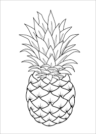 Tổng hợp tranh tô màu chủ đề các loại rau củ quả cho bé yêu thỏa sức sáng  tạo - Zicxa hình ảnh