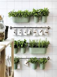 nice hanging plant wall decor for home design idea
