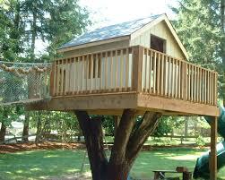 ... Large-size of Genuine Treehouse Ideas Plus Treehouse Treehouse Garden Treehouse  Ideas Also Livable Tree ...