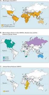 Bluetounge Virus African Horse Sickness An Overview Sciencedirect Topics