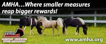 Helpful Information About Miniature Horses
