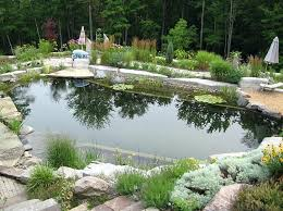 natural looking in ground pools. Pools Natural Looking In Ground