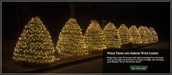 christmas tree lighting ideas. Wrap Bushes And Shrubs With Christmas Lights Tree Lighting Ideas O