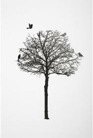 great way to display photos at work without nailing drilling into the wall birds on a wire photo clips from urban outfitters the office pinterest  on wall art black and white trees with great way to display photos at work without nailing drilling into