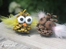 Image result for pinecone