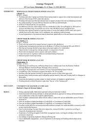 Credit Risk Business Analyst Resume Samples | Velvet Jobs