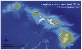 Reading Charts Fundamentals Of Options Trading Honolulu