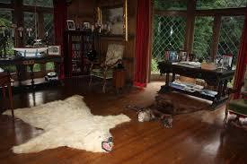 bear skin rug and fireplace photo 4