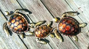 turtle wall decor coastal a sea outdoor trio