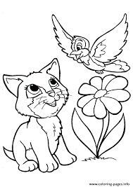 Fat Cat Coloring Pages Printable Happy Senior Page For Boys