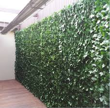 artificial ivy google search