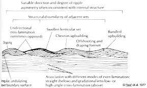 geol342 sedimentation and stratigraphy