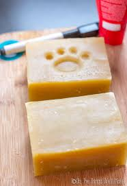 get your dog clean the easy way with this dog soap recipe i ll