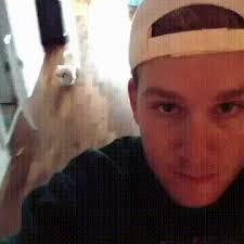 clingy gif. clingy dog. gif