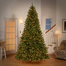 Boulder Blue Spruce Artificial Christmas Tree  TreetopiaBlue Spruce Pre Lit Christmas Tree