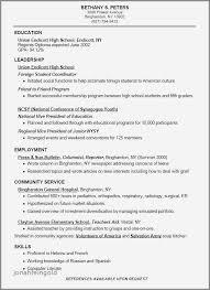 Customer Service Resume Objective Examples Interesting General Objectives For Resume Lovely Aˆš 60 Elegant General Resume