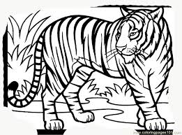 Small Picture Tiger new 15 Coloring Page Free Tiger Coloring Pages