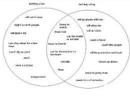 Comparison Venn Diagram Using A Venn Diagram For A Compare And Contrast Essay
