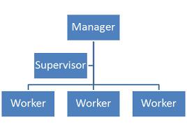 Organizational Chart Meaning Horizontal Leadership Flattening The Organization