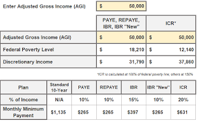 Multiple Student Loan Calculator Student Loan Spreadsheet To Track Your Student Loans Young