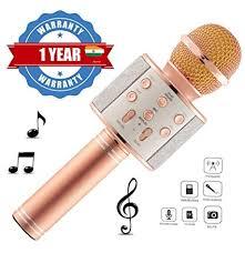 Eazories <b>Portable WS-858 Wireless Karaoke</b> Bluetooth Microphone ...