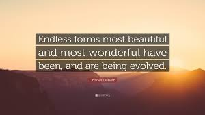 Endless Forms Most Beautiful Quote